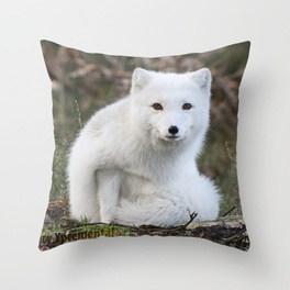 polar-fox-by-anne-elisabeth-pillows