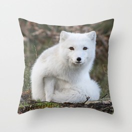 polar-fox-by-anne-elisabeth-pillows